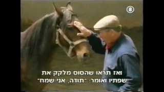 The Real Horse Whisperer, Monty Roberts 1of4