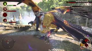 Dragon Age Inquisition- How To Kill The Gamordan Stormrider (DragonSlayer)