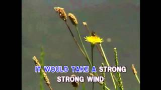 Strong Strong Wind - Air Supply (Karaoke Cover)