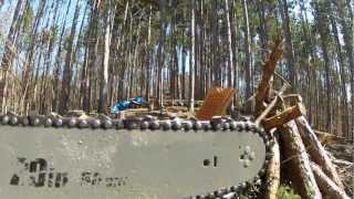 Chainsaw GoPro Hero2
