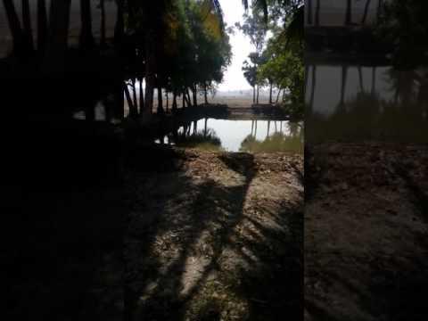Xxx Mp4 Sonakhali Picnic Spot 3gp Sex