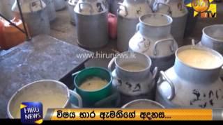 Ambewela milk problem
