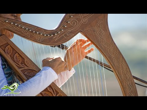 Xxx Mp4 Relaxing Harp Music Sleep Music Meditation Music Spa Music Study Music Instrumental Music ★49 3gp Sex