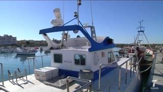 Unos 300 pesqueros se ven afectados por la veda del pulpo en el Golfo de Cádiz