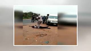 Breaking News - Video: Customs begins interrogation of officers, looks into weapon handling