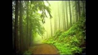 Munjaane Manjalli  - Vinay H Y (Just Maat maatalli)