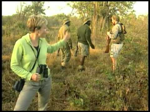 watch Fine Living Channel: Luxury African Adventures