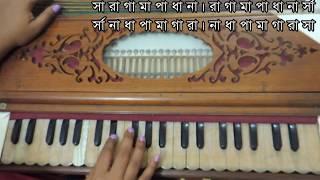 Learn Bengali Music  || harmonium || Lesson 4