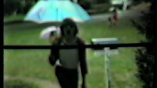 Fool in the Rain FAN VIDEO 1986 Led Zeppelin music video --(Weird Paul)