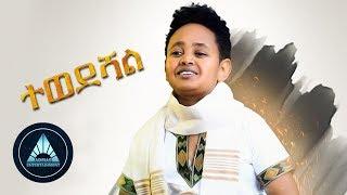 Dawit Alemayehu - Tewedeshal | ተወደሻል - New Ethiopian Music 2018