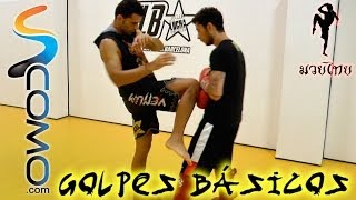 Golpes básicos - Clase de Muay Thai 2