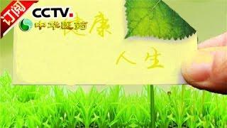 《中华医药》 20170319 洪涛信箱:补好身体的小洞洞   CCTV-4