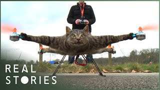 All Creatures Great and Stuffed (Extraordinary Taxidermy Documentary) - Real Stories