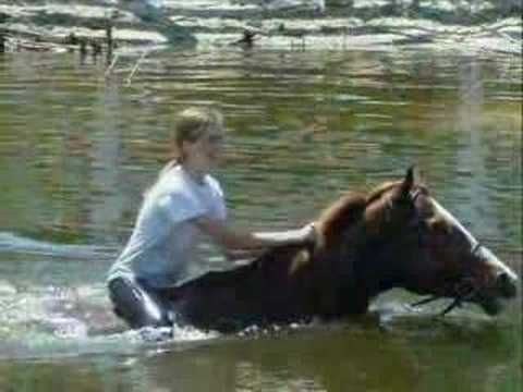 Morgan and Elle swimming with horses