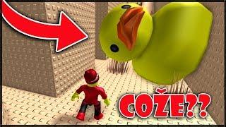POZOR NA ZABIJÁCKÉ KACHNIČKY!!! - Roblox - Crazy Fun House Obby!