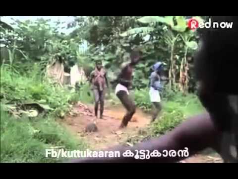 Xxx Mp4 Comedy Video Of Nigro😘 3gp Sex