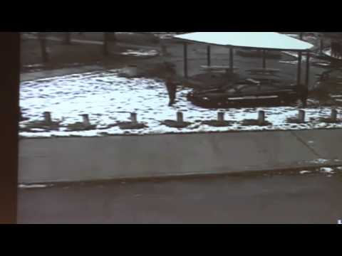 Xxx Mp4 Video Shows Cleveland Police Officer Fatally Shoot 12 Year Old Tamir Rice 3gp Sex