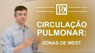 Circulação Pulmonar: Zonas de West - Prof. Rodrigo Storck
