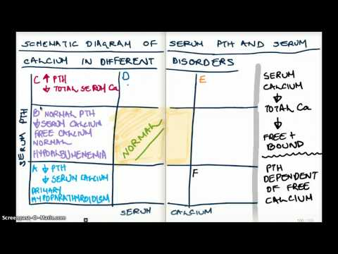 Xxx Mp4 Different Disorders Of PTH And Serum Calcium Diagram 3gp Sex