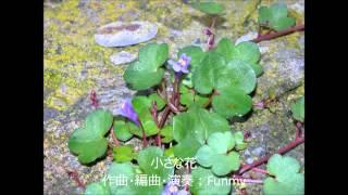 Funmy: 小さな花 (2009)