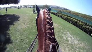 GoPro: Horse Show Jumping