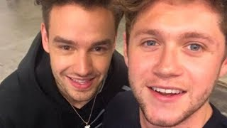 Niall Horan & Liam Payne Have Small One Direction REUNION