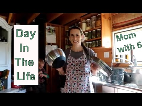 Xxx Mp4 Day In The Life Of A Mom With 6 Homeschool Off Grid Homestead 3gp Sex
