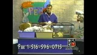 The world's worst petkeeper on TV, cute little puppy tongue get bitten by tortoise