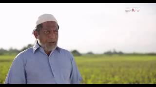 Funny Scene From JOMOJ 1 By Mosharof Karim