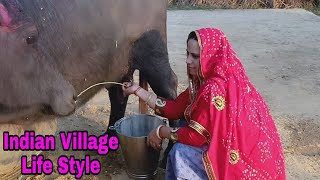 Buffalo Milking Village Life Vlogs - Saroj Sharma Kitchen