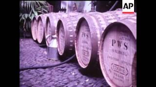 Wine Harvest - 1971