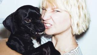 Sia - Wild Ones (Solo Version - without Flo Rida)