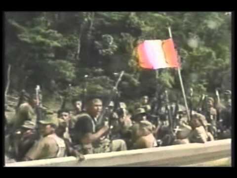OPERACIONES MILITARES DEL ALTO CENEPA 1995