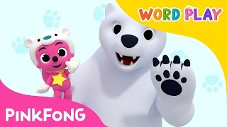 Polar Bear | Word Play | Pinkfong Songs for Children