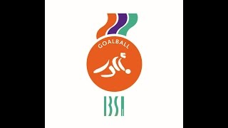Finals of the 2014 IBSA Goalball World Championships.