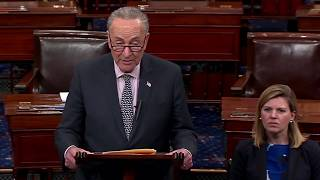 Schumer speaks about Trump and Michael Cohen