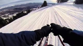 Skiing Speed Merchants run the Olympic Downhill
