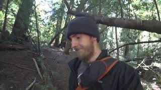 The Forest Consumed Me - Plein Air Adventure 69