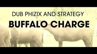 Dub Phizix and Strategy - Buffalo Charge