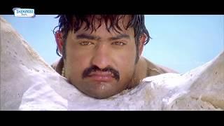 Zara Zara Full Video Song | Rakhi Telugu Movie Video Songs | Jr NTR | Ileana | Charmi | DSP