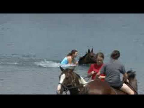 Horse Riding and swimming in a Pond