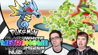 Type Matchups are NOTHING! Pokemon Black & White Metronome Randomizer Nuzlocke #23