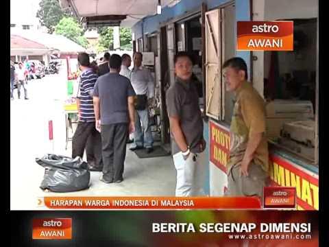 Xxx Mp4 Harapan Warga Indonesia Di Malaysia 3gp Sex
