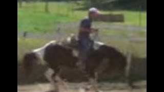 Horse Bucking in first time canter with Mike Hughes, Auburn California
