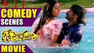 Ninnepelladatha Comedy Scenes Part - 2 - Ninne Pelladatha Movie - Nagarjuna,Tabu