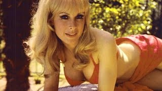 Who is Barbara Eden?