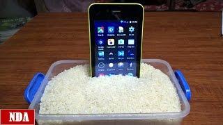 5 Wonderful LifeHack with Rice