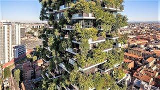 Crazy Urban Nature