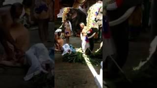 Elephant Attack at Thirunakkara Temple 2017   Lucky Escape