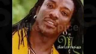 Jamaican Lover the Mix Vol 2 (Mikey Spice) Section